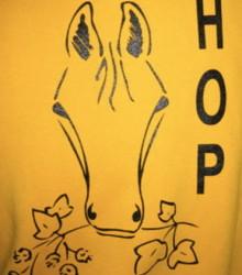 logo NSR Hop